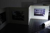http://vincentdalbera.com/files/gimgs/th-51_Vincent-Dalbera_Souvenirs-aux-bords-2020-009.jpg